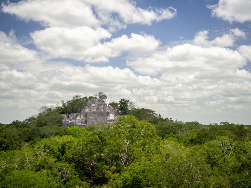 Alte Mayasteinstruktur, die aus der Dschungelüberdachung heraus an steigt lizenzfreies stockbild