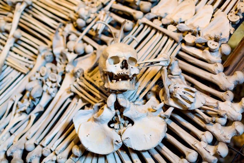 Alte menschliche Schädel- und Knochendekoration in Sedlec, Tschechische Republik Kutna hora stockfotografie
