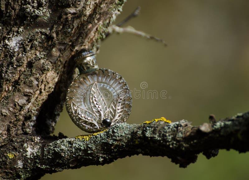 Alte mit Filigran geschmückte silberne Parfümflasche auf einem Baum - Herbstszene vom Garten mit europäischem Altertum stockbild