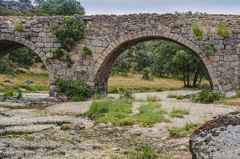 Alte mittelalterliche Brücke mit fünf Bögen Ledesma Salamanca Spanien lizenzfreies stockbild