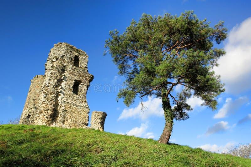 Alte mittelalterliche Schloss-Kontrollturm-Steinruinen auf Hügel lizenzfreie stockfotografie