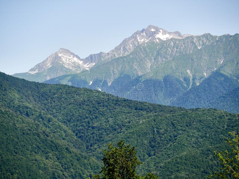 Alte montagne con i pendii verdi con i picchi nevosi Neve ed erba verde sui pendii di montagna di estate immagine stock libera da diritti