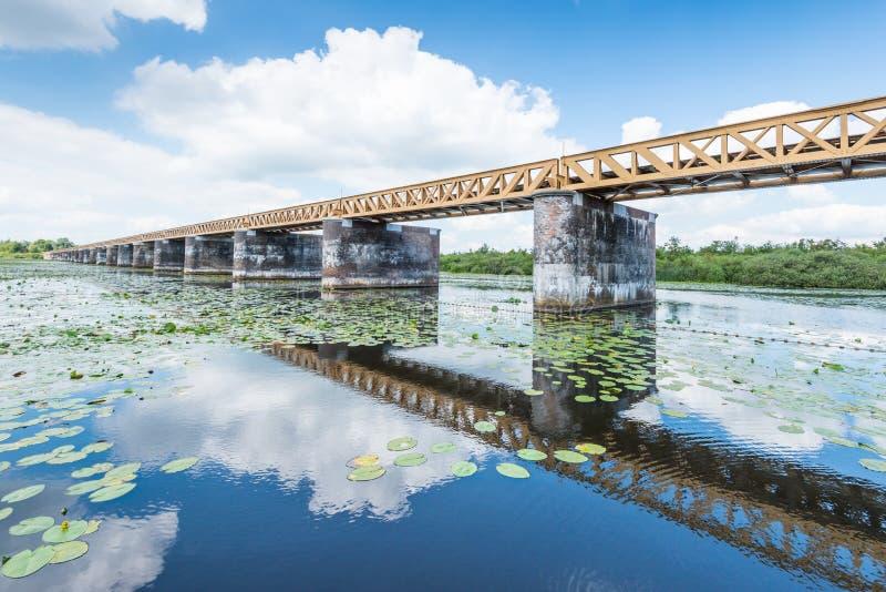 Alte niederländische Brücke in der Sommerzeit lizenzfreies stockbild