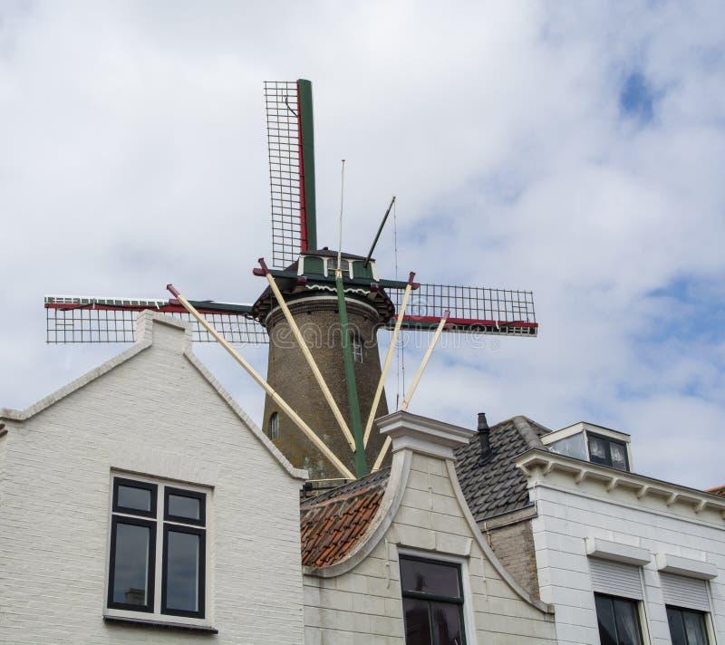 Alte niederländische Häuser und traditionelle Windmühle in Zierikzee, historische Stadt in Zeeland, die Niederlande stockfotografie