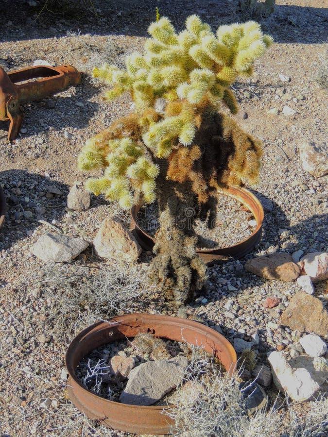 Alte Reifen mit Metalllastwagenradspitzen in der Wüste in Arizona in einer verlassenen Geistbergbaustadt lizenzfreie stockbilder