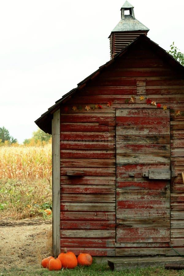 Alte rote Scheune auf Maisfeld lizenzfreie stockbilder