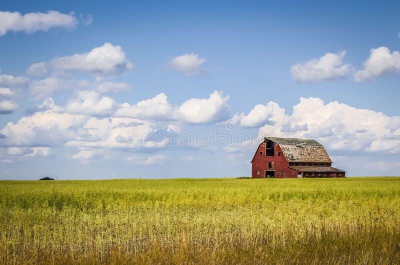 Alte rote Scheune, die auf einem Gebiet im Abstand unter einem blauen Himmel mit weißen Wolken sitzt stockbilder