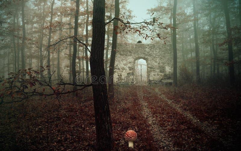 Alte Ruine im Wald, Fantasiefoto lizenzfreie stockfotos