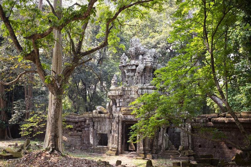 Alte Ruinen von Angkor Thom Tempel in Angkor Wat Komplex, Kambodscha Angkor Thom Wand und Tor im Wald stockfotografie