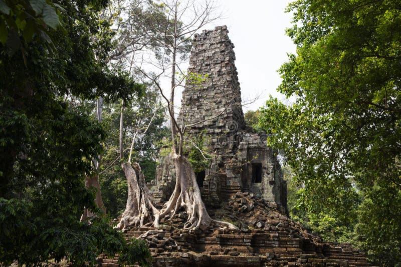 Alte Ruinen von Tempel Preah Palilay in Angkor Wat Komplex, Kambodscha Demolierter hindischer Tempel mit Bäumen lizenzfreie stockfotografie