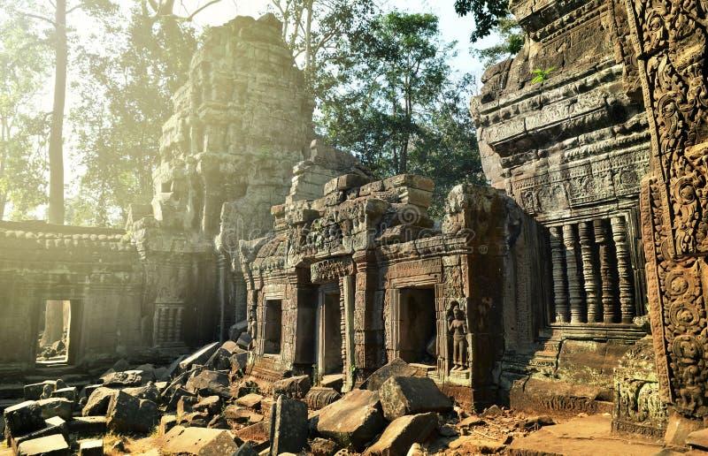 Alte Ruinen von Tempel Ta Prohm, Angkor Kambodscha stockfoto