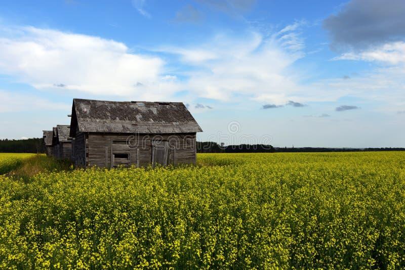 Alte rustikale Getreidespeicher lizenzfreie stockbilder