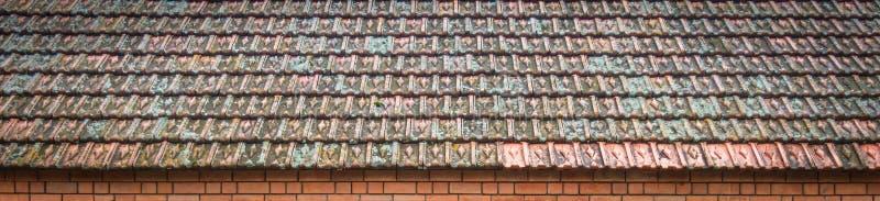 Alte Schindeln, überwältigt mit Moos stockfotografie