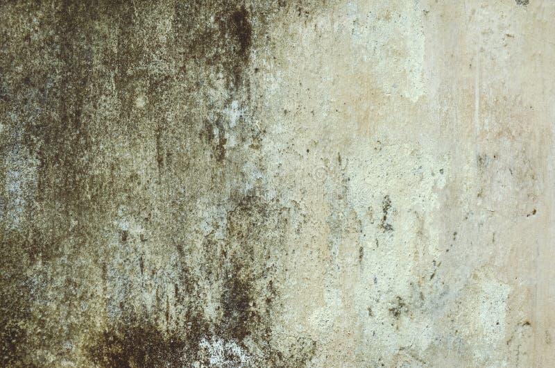 Alte schmutzige weiße Wand mit verkratzter alter weißer Farbe stockbild