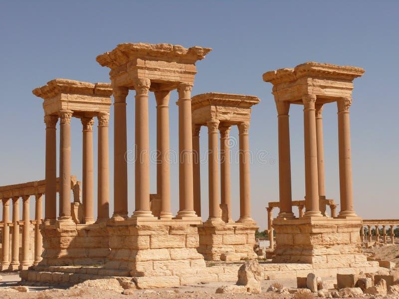 Alte Spalten, Palmyra Syrien stockfoto