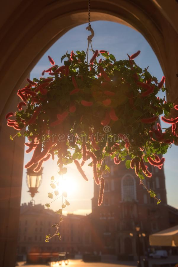 Alte Stadt Krakaus, Marktplatz mit St- Mary` s Kirche bei Sonnenaufgang, historisches Mittelstadtbild, Polen, Europa stockbild