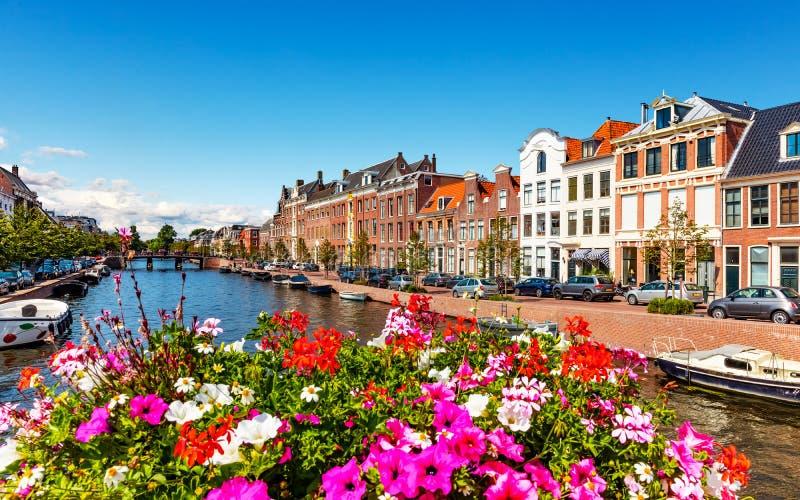 Alte Stadt von Haarlem, die Niederlande lizenzfreies stockfoto