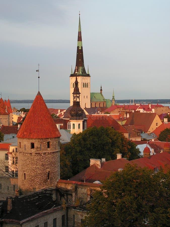 Alte Stadt von Tallin lizenzfreies stockfoto