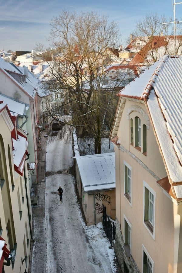 Alte Stadt am Winter Panorama von Helleman-Turm tallinn Estland lizenzfreie stockfotos