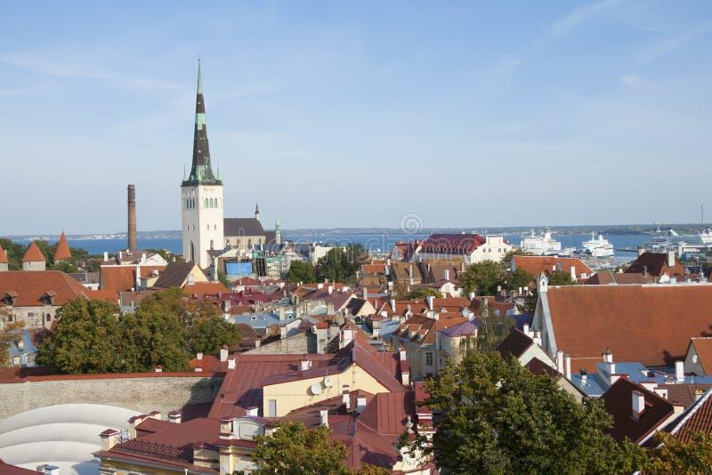 Alte StadtSkyline Tallinns lizenzfreies stockbild