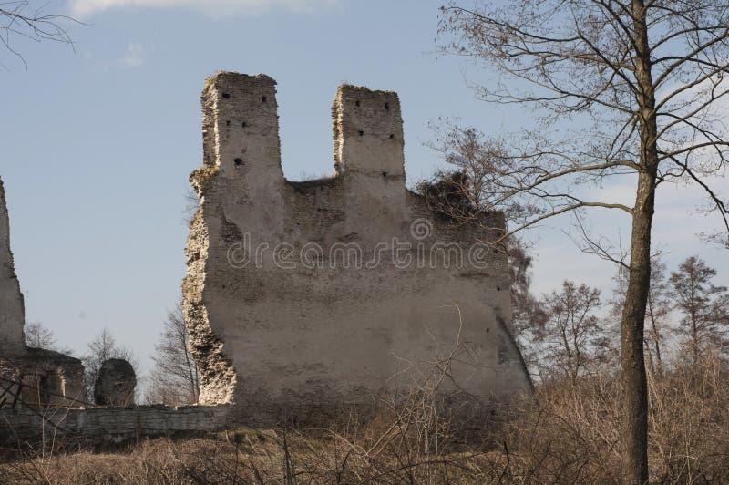 Alte Steinschlossruinen lizenzfreie stockbilder