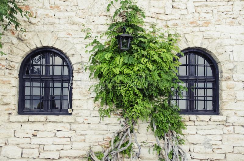 Alte Steinwand mit Windows lizenzfreie stockbilder