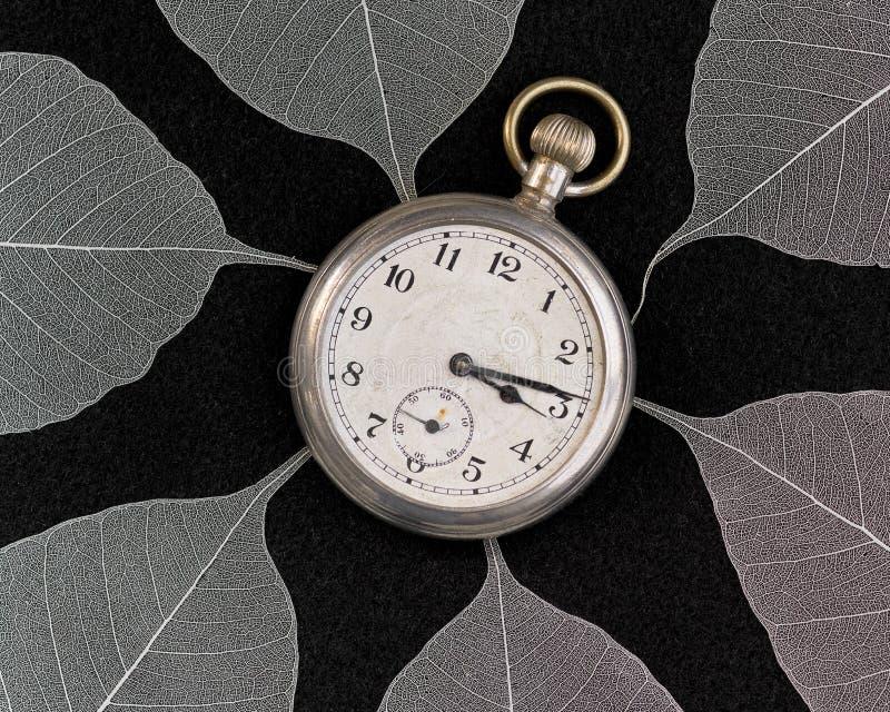 Alte Taschenuhr nach innen in Position gebracht von den Blättern lizenzfreie stockfotografie