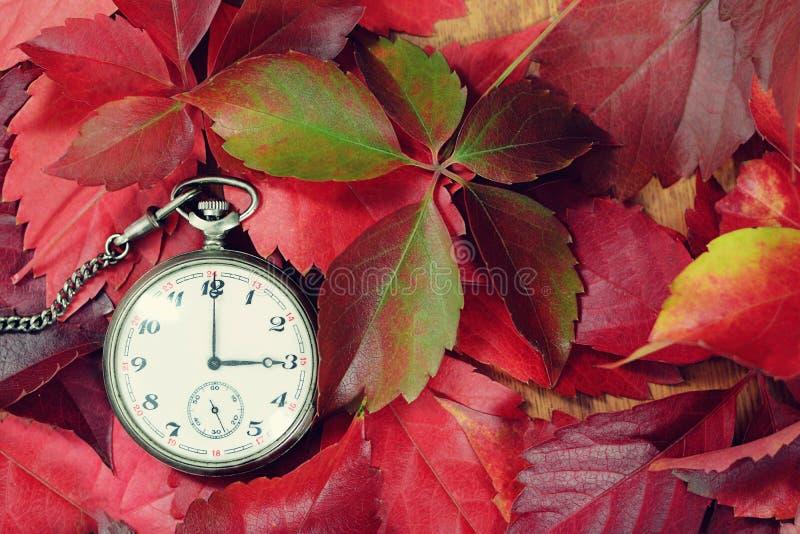 Alte Taschenuhr und roter Herbstlaub stockfotografie