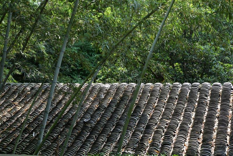 Alte traditionelle mit Ziegeln gedeckte chinesische Dach- und Bambusbäume stockfotografie