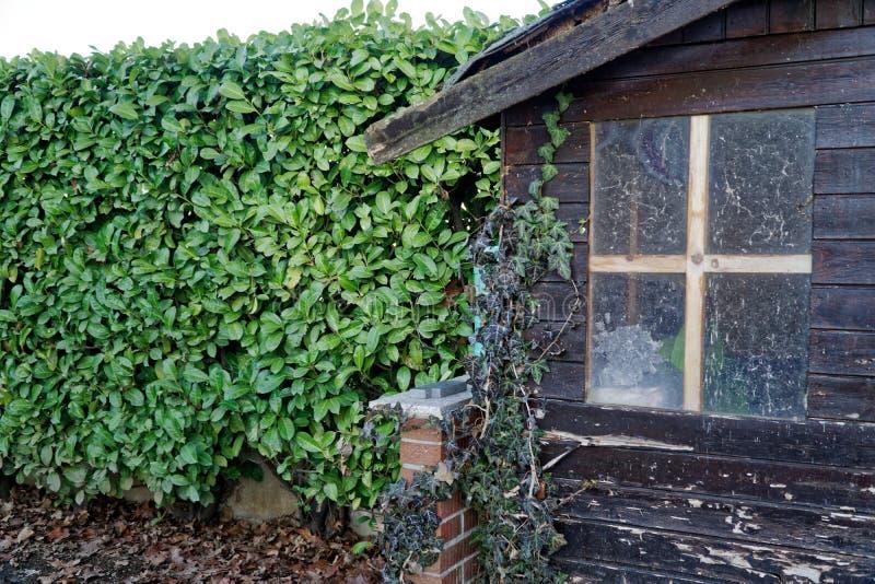 Alte trostlose Scheune mit schmutzigem Weinlesefenster, nettes kleines Haus auf Hinterhof lizenzfreie stockbilder