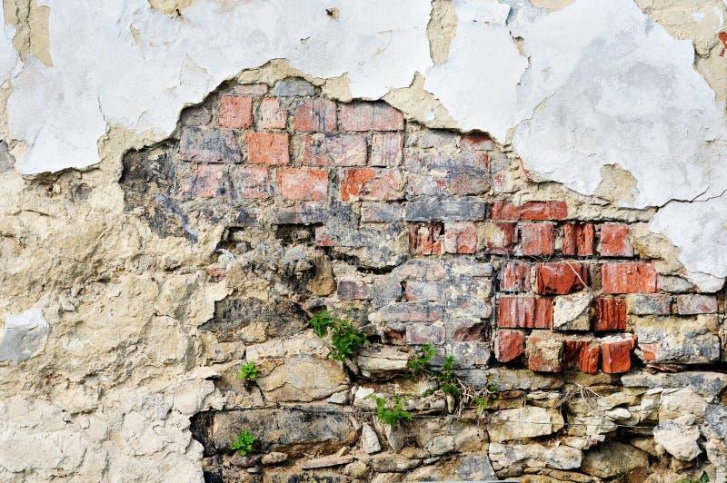 Alte vergipste Backsteinmauer stockbilder