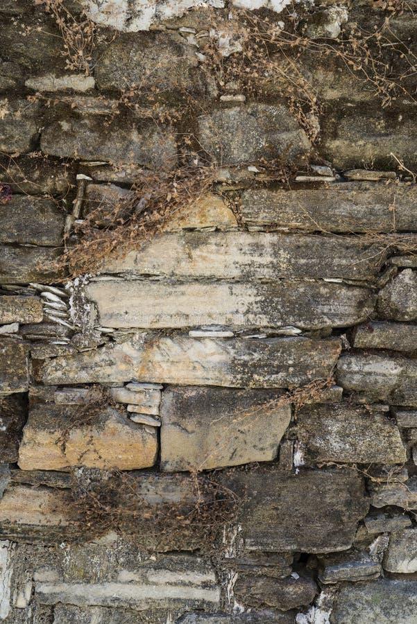 Alte verwitterte Steinwandbeschaffenheit oder -hintergrund lizenzfreie stockfotografie