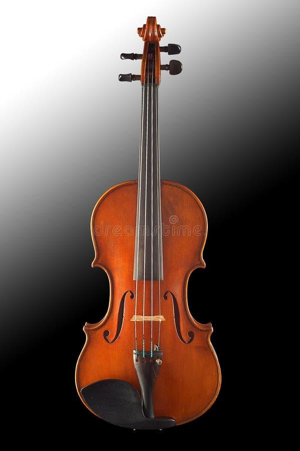 Alte Violine stockbild