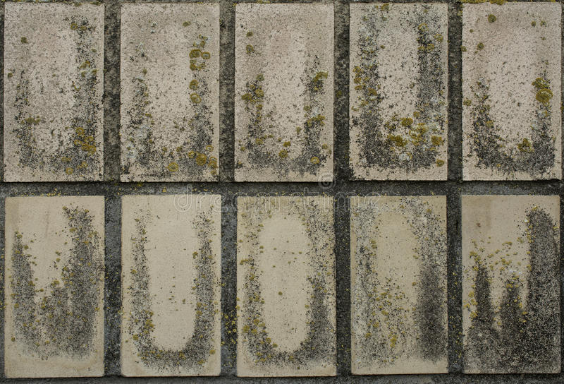Alte Wand-Fliesen stockfoto