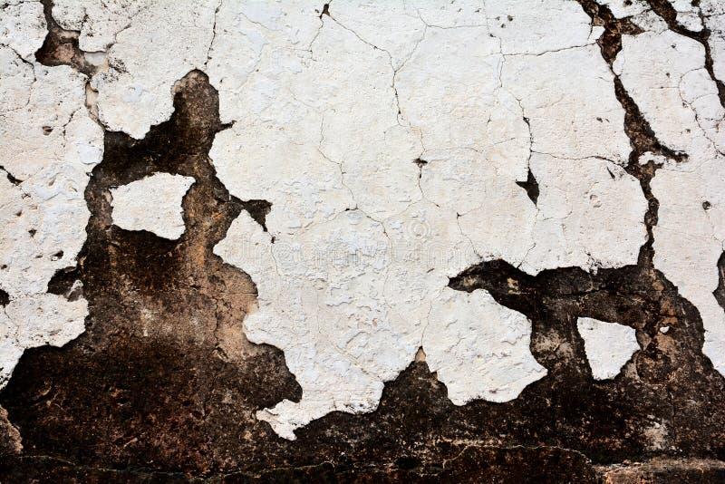 Alte weiße Lehmwand stockfotografie