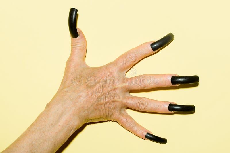 Alte weibliche Hand mit Nägeln stockbild