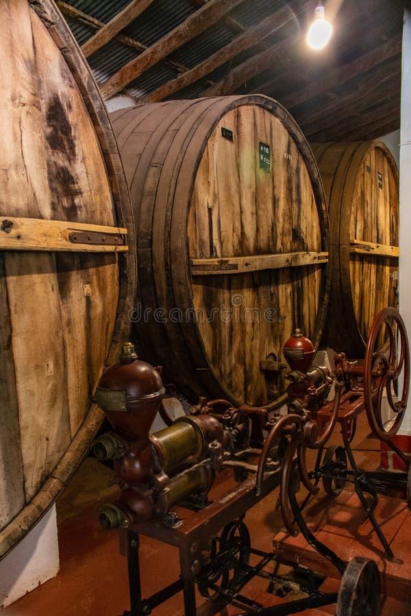 Alte Weinfässer, Cafayate, Salta, Argentinien stockbilder