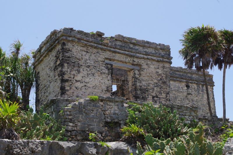 Alte Zeit Mayas stockfoto