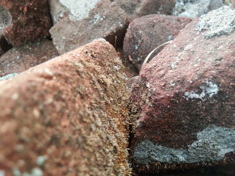Alte Ziegelsteine stockfotos