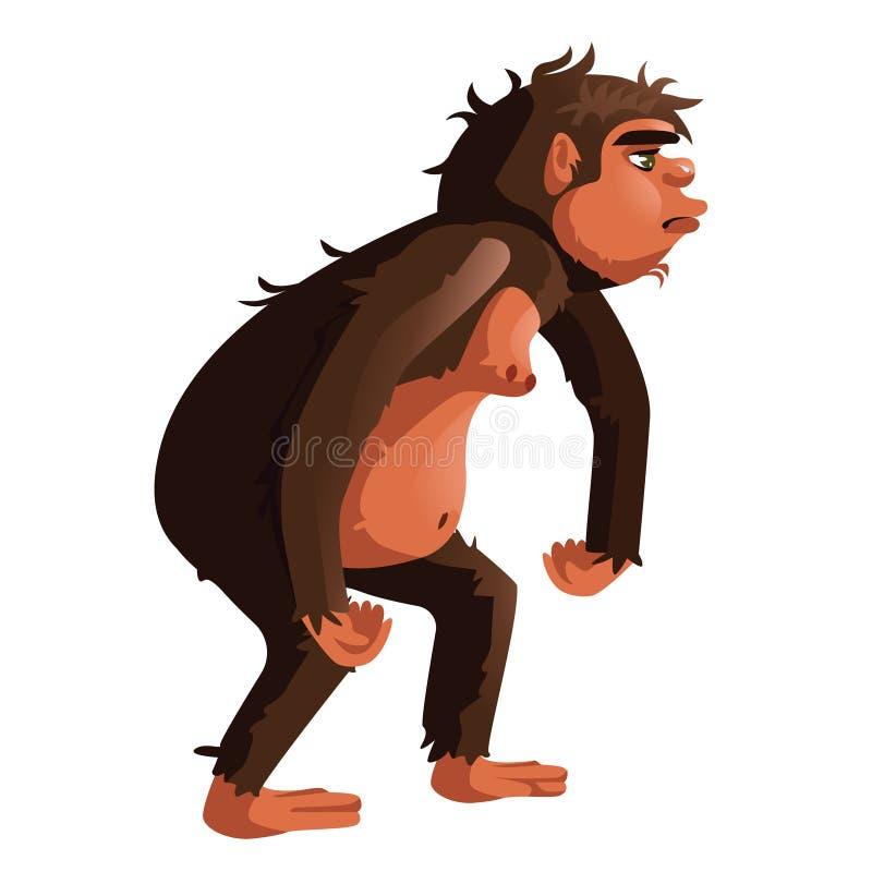 Alter Affe, menschliche Vorfahrnillustration vektor abbildung