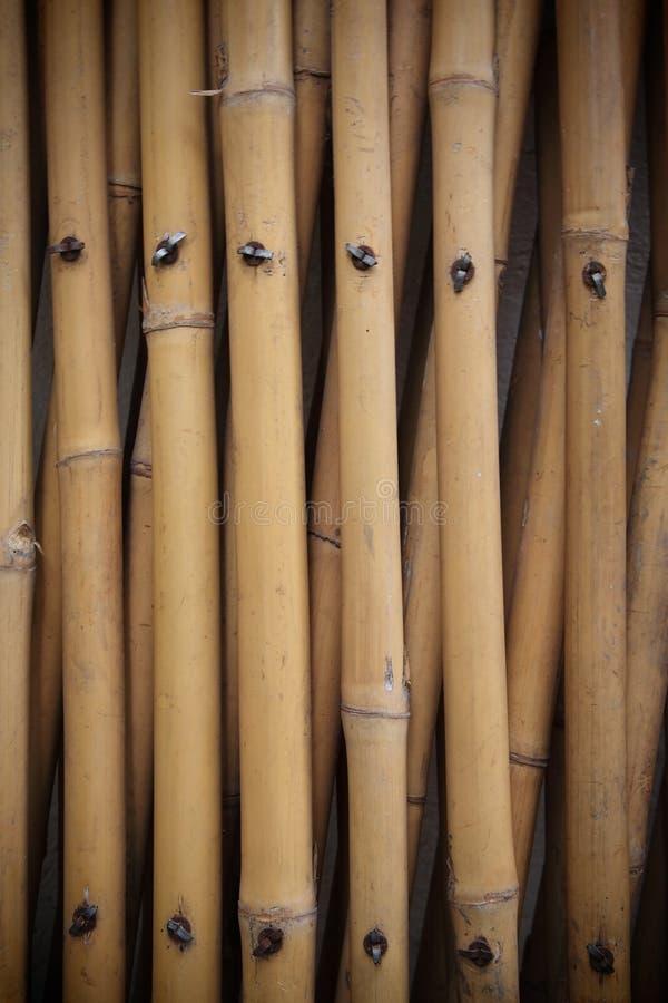 Alter Bambuszaun stockfotografie