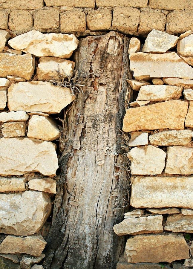 Alter Baum in einer Stein-brik Wand stockbild