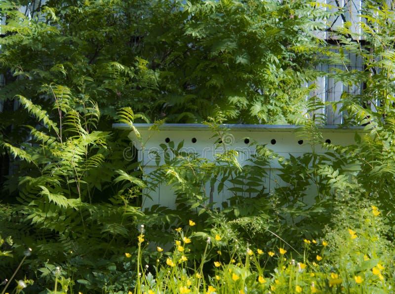 Alter Bienenbienenstock im Grün lizenzfreies stockfoto