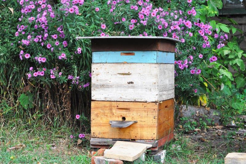 Alter Bienenbienenstock im Herbstgarten mit colorfull blüht lizenzfreie stockbilder