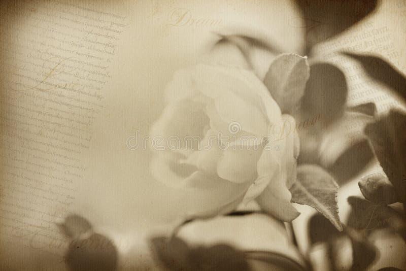 Alter Blumenpapier-Beschaffenheitshintergrund lizenzfreies stockbild