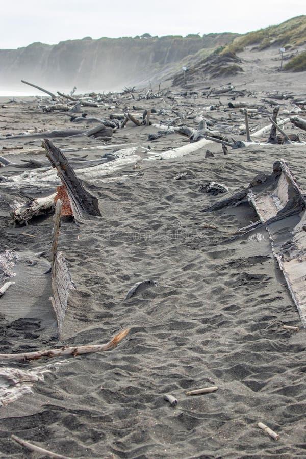 Alter Bootsrumpf und -treibholz auf Westküstenstrand lizenzfreies stockbild