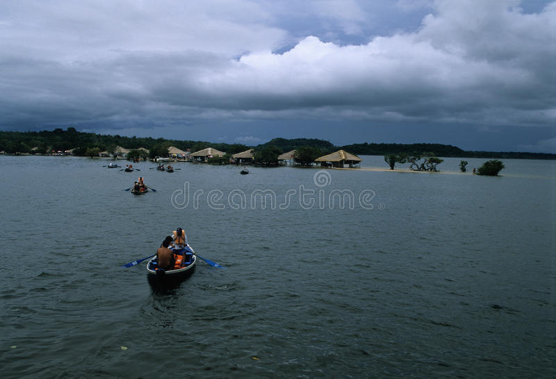 Download Alter Do Chao. Brazil editorial photo. Image of santarem - 23607996