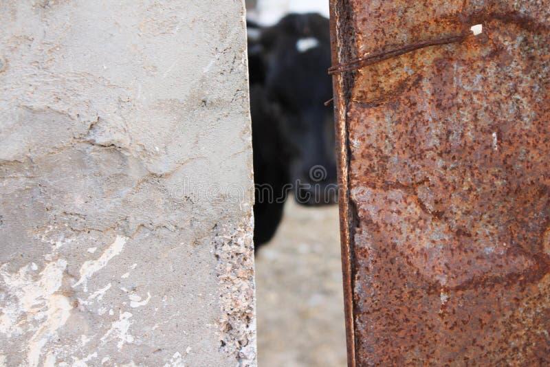 Alter Eisenhintergrund stockbild