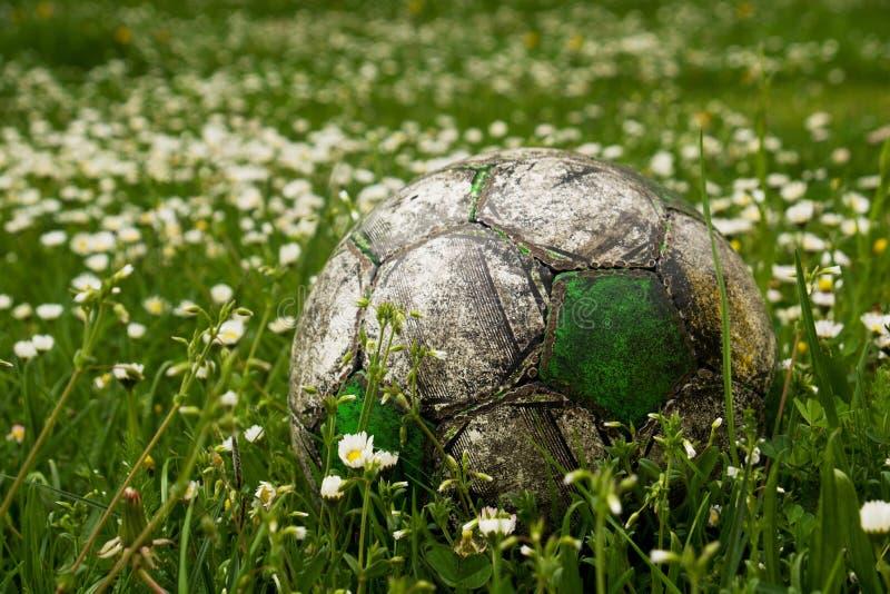 Alter Fußballball versteckt in der hohen Grasblume und -unkraut archiviert lizenzfreie stockbilder