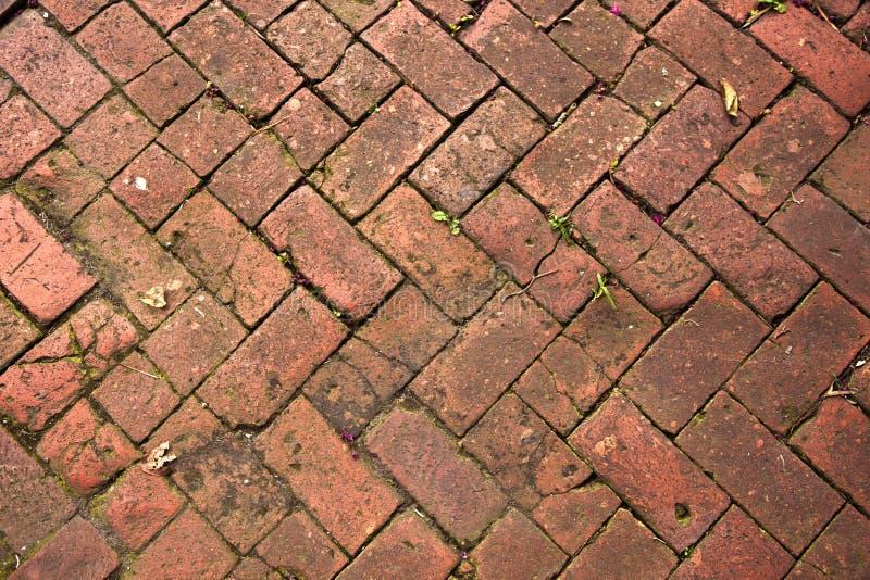 Alter Fußgängerziegelstein paveway lizenzfreie stockfotografie